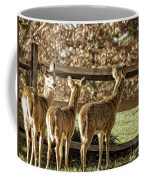 Are You Looking At Us Coffee Mug