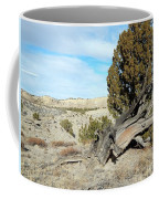 Arid Beauty Coffee Mug
