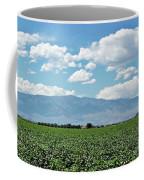 Arizona Cotton Field Coffee Mug