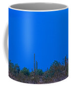 Arizona Desert Landscape  Coffee Mug