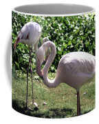 Arizona Flamingos Coffee Mug