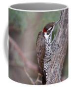 Arizona Woodpecker Coffee Mug
