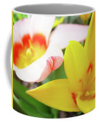 Art Prints Pink Tulip Yellow Tulips Giclee Prints Baslee Troutman Coffee Mug