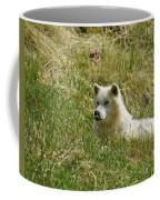 Artic Wolf 2 Dry Brushed Coffee Mug