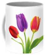 Tulip Trio Coffee Mug