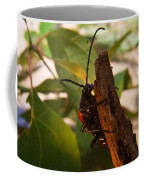 Asending Beetle Coffee Mug