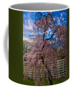 Asian Cherry In Blossom Coffee Mug