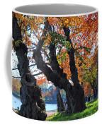 Asian Cherry Trees Of Fall Coffee Mug