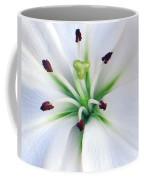 Asian Lilly I I Coffee Mug