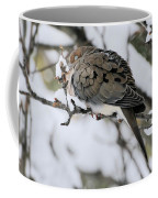 Asleep In The Snow - Mourning Dove Portrait Coffee Mug