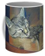 Asleep....in A Box Coffee Mug