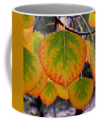 Aspen Color Coffee Mug