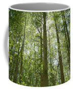 Aspen Green Coffee Mug