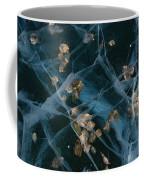 Aspen Leaves Frozen In Lake Coffee Mug