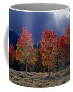 Aspen Light Coffee Mug