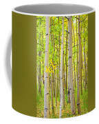 Aspen Tree Forest Autumn Time Portrait Coffee Mug