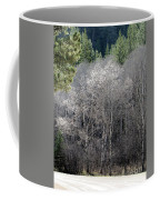 Aspens In Morning Light Coffee Mug