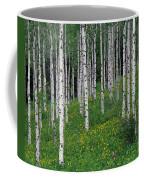 Aspens In Spring Coffee Mug