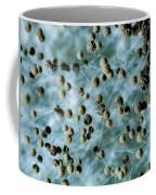 Aspergillum Fungus Coffee Mug