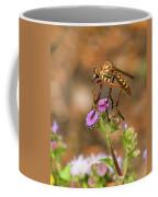 Assasin Fly Coffee Mug