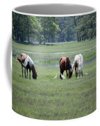 Assateague Island - Wild Ponies And Their Buddies  Coffee Mug