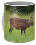 Assateague Sitka Deer Coffee Mug