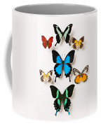 Assorted Butterflies Coffee Mug