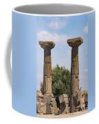 Assos Temple Of Athena Columns Coffee Mug