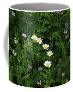 Aster And Daisies Coffee Mug