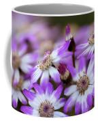 Aster Delights Coffee Mug