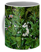 Asters And Fringed Grass-of-parnassus And Red Monkeyflowers On Highline Trail In Glacier National Pa Coffee Mug