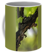 At Lachish Vineyard Coffee Mug