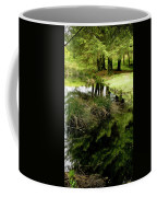 At The Edge Of The Forest Pond. Coffee Mug