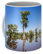Atchafalaya Cypress Tree Coffee Mug