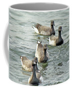 Atlantic Brant Geese - Branta Bernicla Hrota Coffee Mug