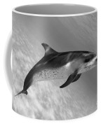 Atlantic Spotted Dolphin Coffee Mug