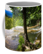 Atop Falling Spring Fall Coffee Mug