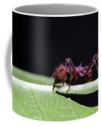 Atta Coffee Mug