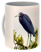 Audubon Blue Coffee Mug