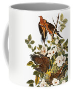 Audubon Dove Coffee Mug