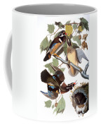 Audubon: Duck Coffee Mug