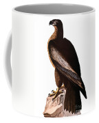 Audubon: Eagle Coffee Mug