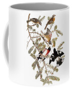 Audubon: Grosbeak Coffee Mug