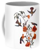 Audubon: Hummingbird Coffee Mug by Granger