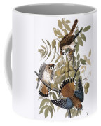 Audubon: Kestrel, 1827 Coffee Mug