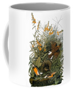 Audubon: Meadowlark Coffee Mug