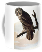 Audubon Owl Coffee Mug