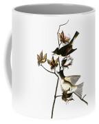 Audubon: Phoebe Coffee Mug