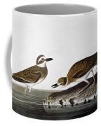 Audubon: Plover, 1827-38 Coffee Mug