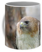 Audubon Quality Coffee Mug
